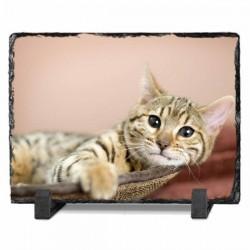Schieffertafel mit Foto selbst gestalten